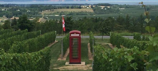 Phone Box at Luckett Vineyards